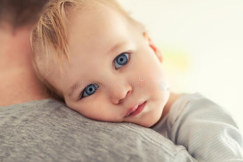 Close-up portrait of cute adorable blond caucasian toddler boy on fathers shoulder indoors. Sweet little child feeling safety on. Daddys hand. Responsibility royalty free stock photos