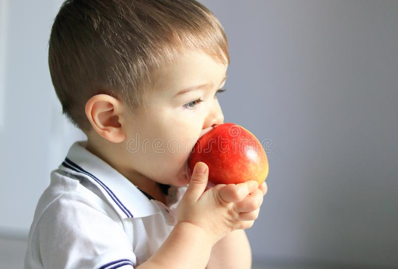 Close up portrait of cute little baby boy holding and eating red apple. Healthy food, diet, vegetarianism and veganism concept. stock photo