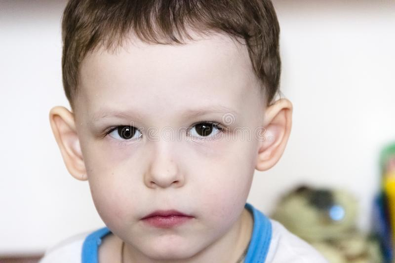 Close up portrait of cute little boy on background royalty free stock photo