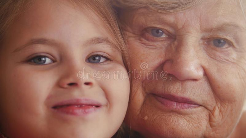 Close up portrait of cute small lovely granddaughter and her charming nice kind granny stock photos