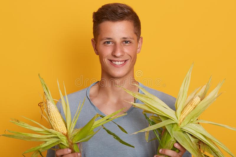 Close up portrait of handsome blond man holding fresh sweet corn cobs with leaves  on yellow background, happy male royalty free stock images