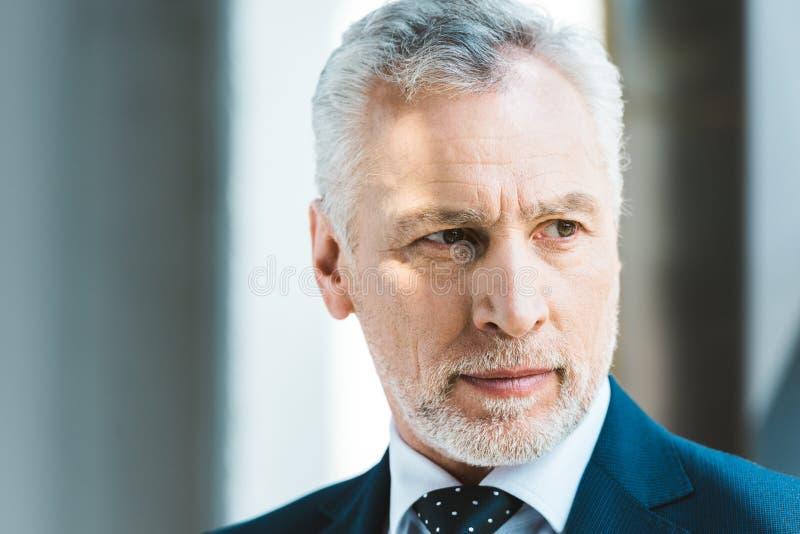 Close-up portrait of handsome senior businessman. Looking away stock photos