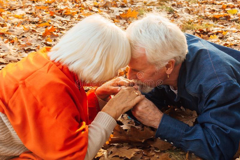 Close up portrait of a happy old man kissing his wife`s hands. In the park in autumn foliage a happy couple is resting.  stock images