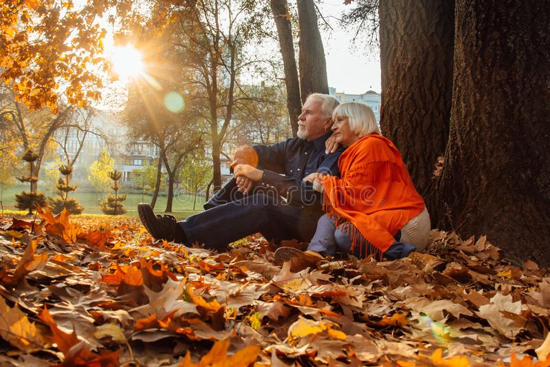 Close up portrait of a happy old woman and man in a park in autumn foliage.  stock images