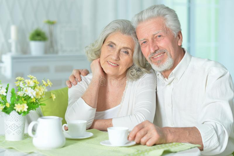 Close up portrait of happy senior couple drinking tea stock image