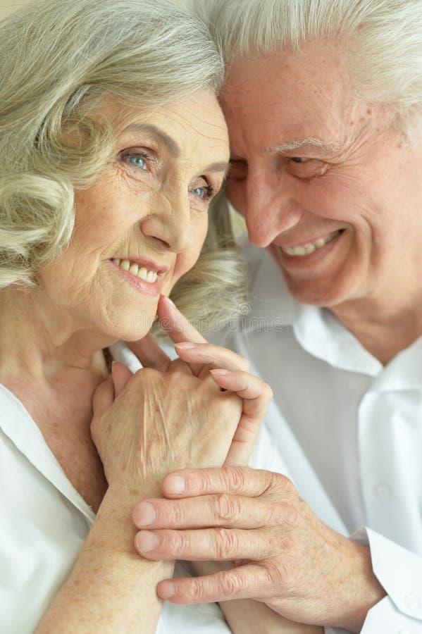 Close up portrait of happy senior couple posing royalty free stock image