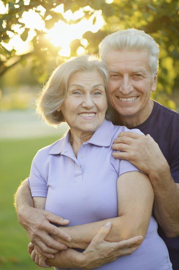 Portrait of happy senior couple posing in park royalty free stock photos