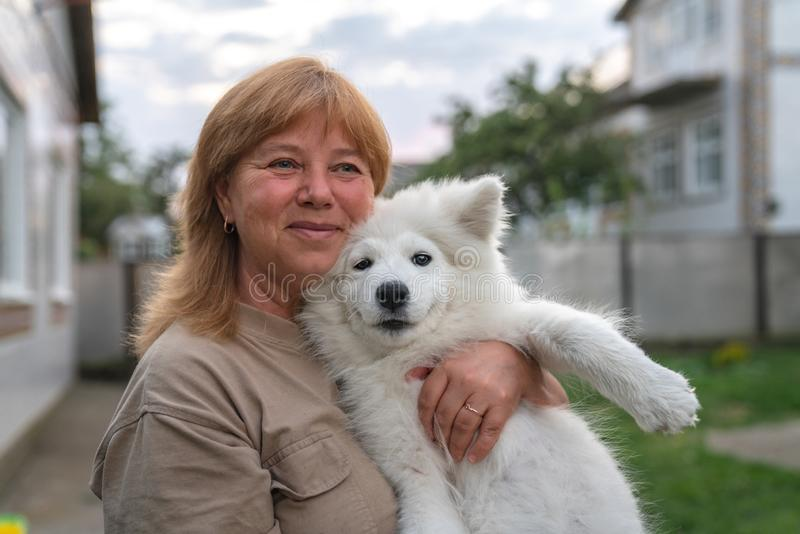 Close up portrait of happy smiling blonde woman that holds white samoyed puppy on her hands royalty free stock photography