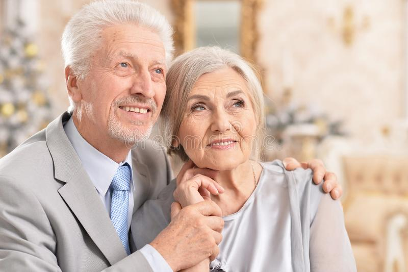 Close up portrait of hugging senior couple royalty free stock image