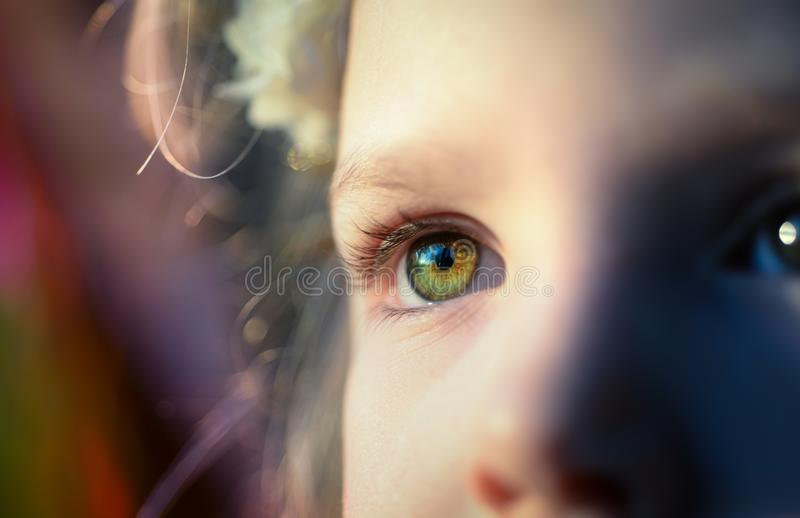 Close-up Portrait of Human Eye royalty free stock images