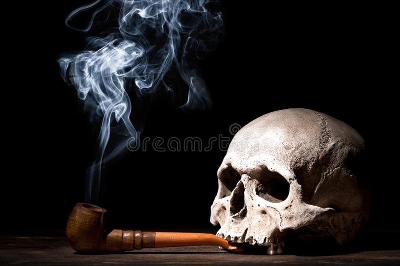 Close up portrait of human skull with smoking pipe and smoke on black background. Health danger concept stock images