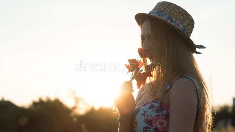 Close up portrait of lovely young romantic woman with poppy flower in hand posing on field background. Wearing straw hat stock images