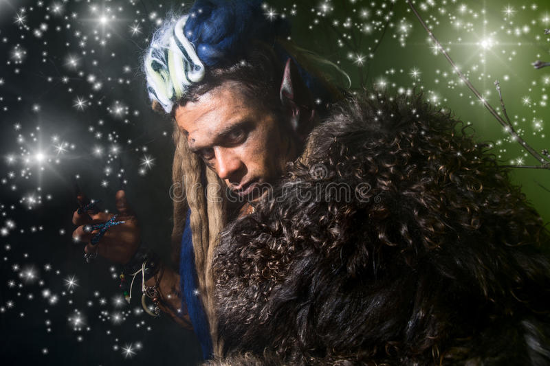 Close-up portrait of a male werewolf in the skin on a dark background with stars. stock photos
