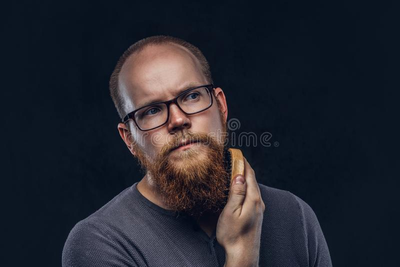Close up portrait of a redhead bearded male wearing glasses dressed in a gray t-shirt, cares about his beard using a. Beard brush. on a dark textured background stock photo