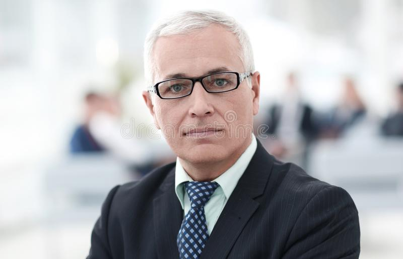 Close up portrait of senior businessman in office royalty free stock image
