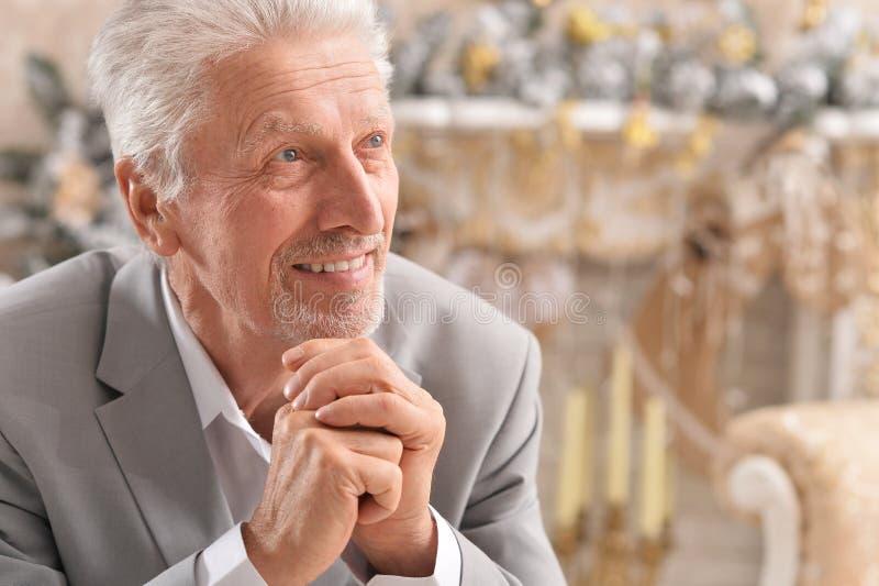 Close up portrait of senior businessman posing royalty free stock image