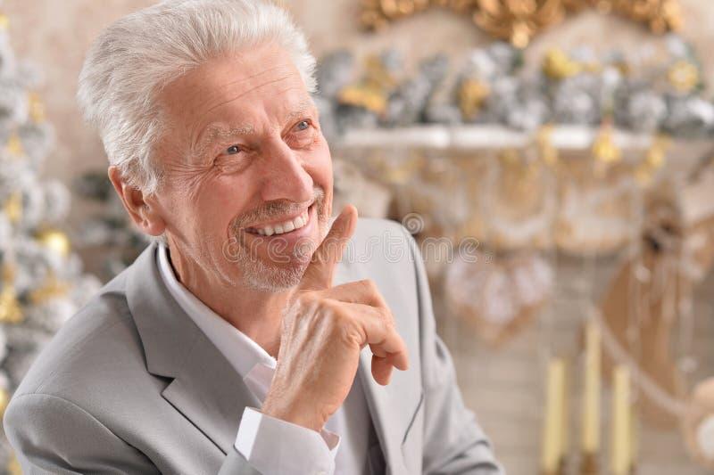 Close up portrait of senior businessman posing stock photos