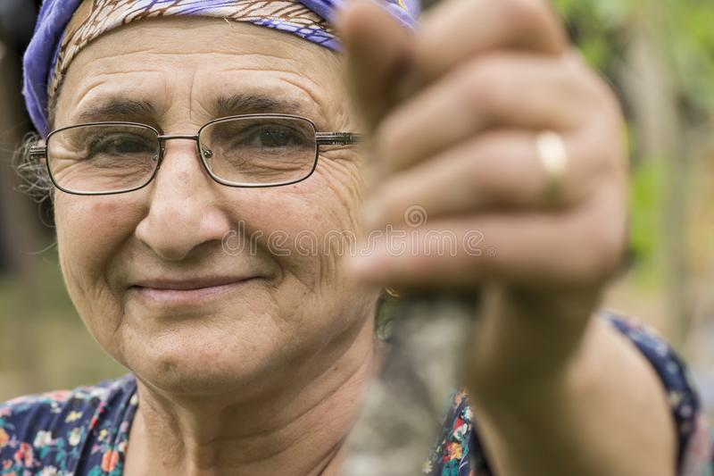 Close-up portrait of a senior Muslim woman with eyeglass at garden outdoor area stock images