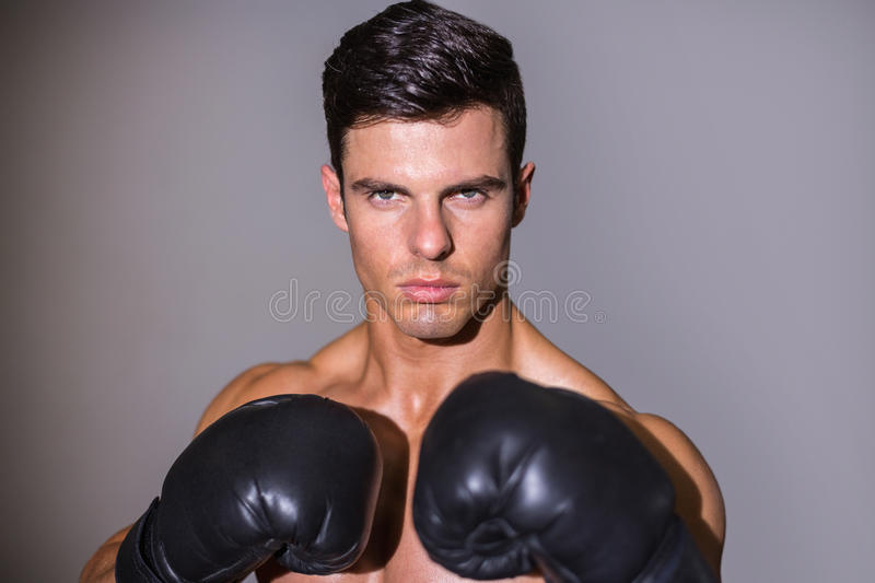 Close-up portrait of a shirtless muscular boxer stock photography