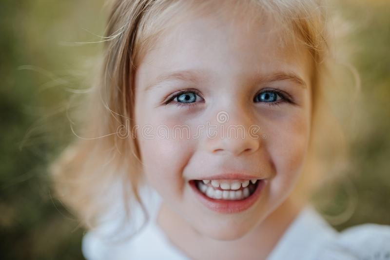 A close-up portrait of small girl in sunny summer nature. royalty free stock photos