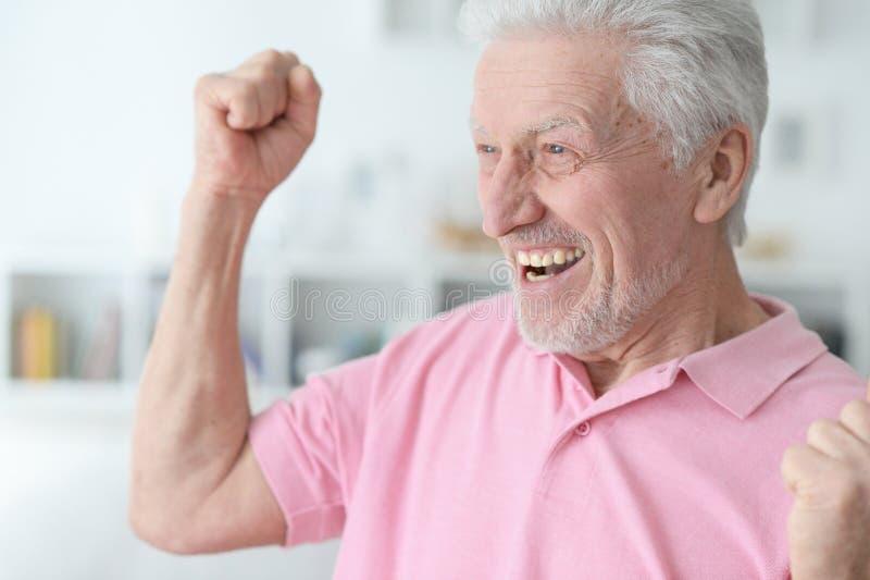 Close up portrait of successful senior man stock image