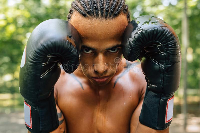 Close up portrait of a sweated kickboxer royalty free stock images