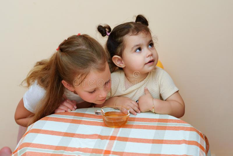 Close up portrait of two funny cute little girl eat honey in home. stock image