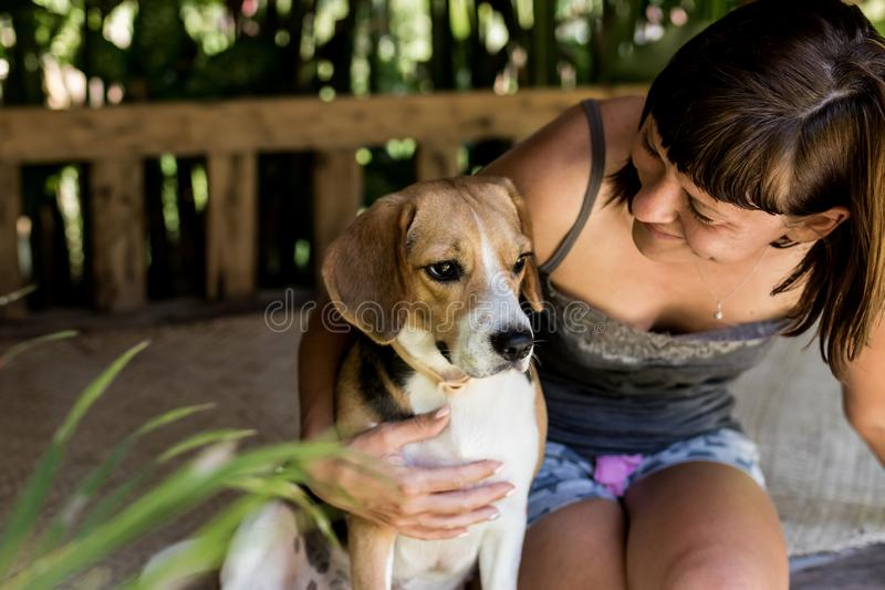 Close up portrait of young woman with her cute beagle dog in gazebo. stock photo