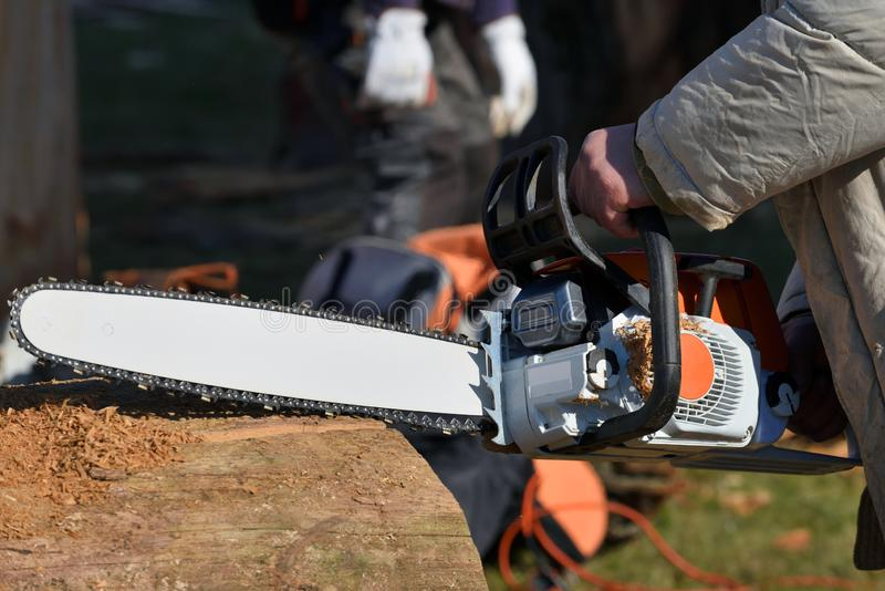 Close up professional chainsaw blade cutting log of wood stock image