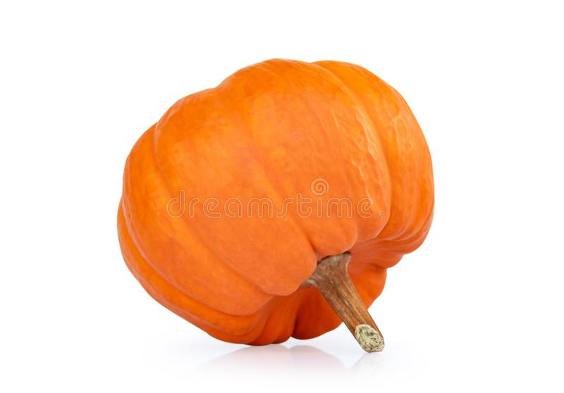 Close up pumpkin isolated on white background royalty free stock photo