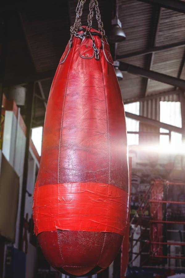 Close-up of punching bag hanging royalty free stock images