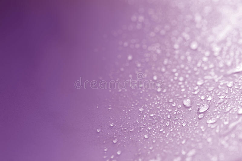 Close up the rain water drops on purple sponge surface as abstract background stock image