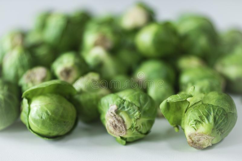 Close up raw Brussesl Sprouts royalty free stock images