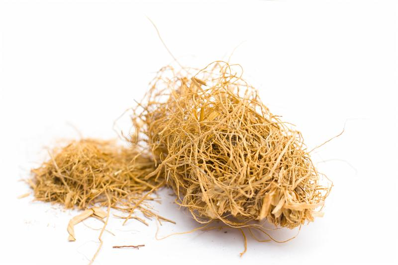 Close up of raw dried vetiver grass or khus isolated on white. Close up of raw khus or vetiver grass a herbal root with full of aroma used in many Indian and royalty free stock photos