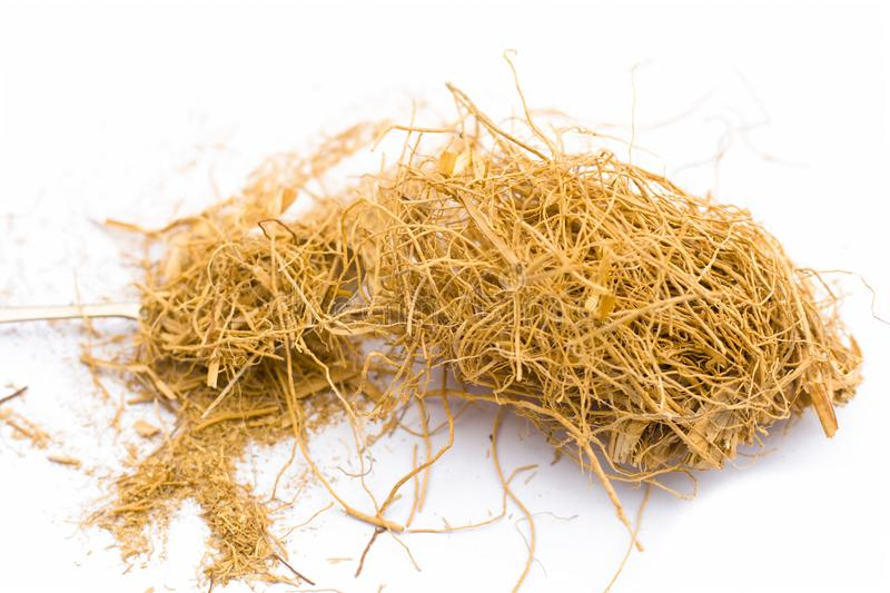 Close up of raw dried vetiver grass or khus isolated on white. Close up of raw khus or vetiver grass a herbal root with full of aroma used in many Indian and royalty free stock photo