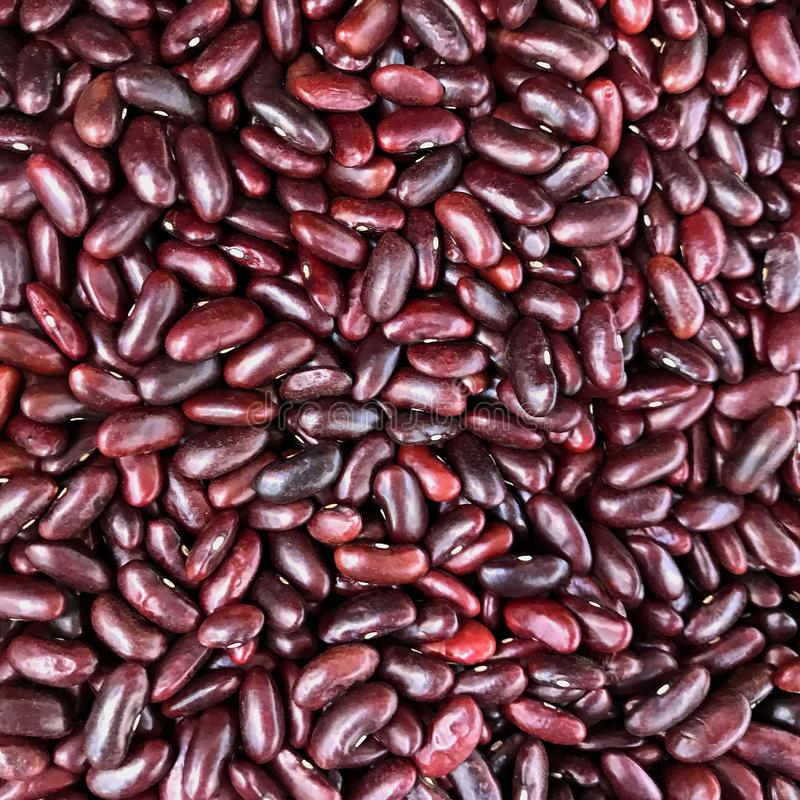 Close up red beans texture background royalty free stock photos