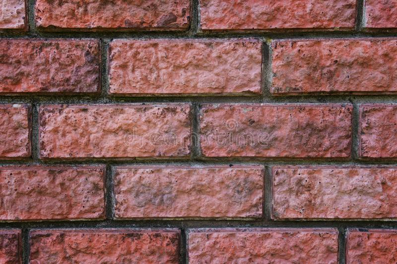 A close up of a red bricked wall. Bricky texture. Brickwork jointed background. Seams of a brick wall. Blocks of bricks in fence c. Onstruction. Zooming of a royalty free stock photography