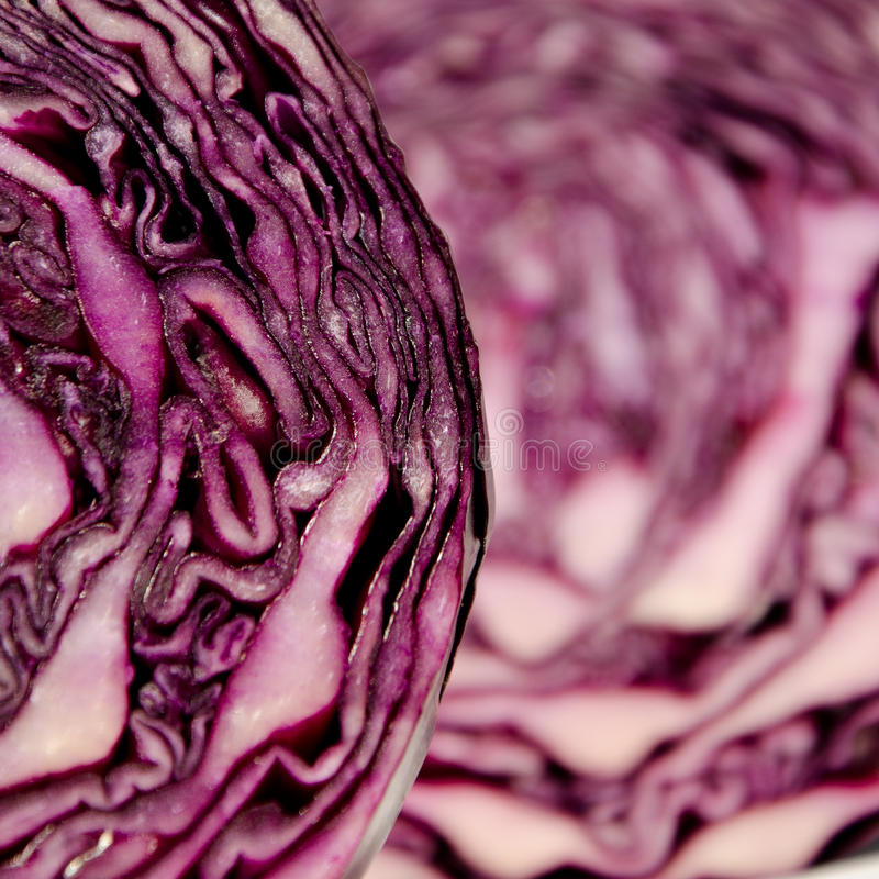 Close-Up of a red Cabbage royalty free stock photos