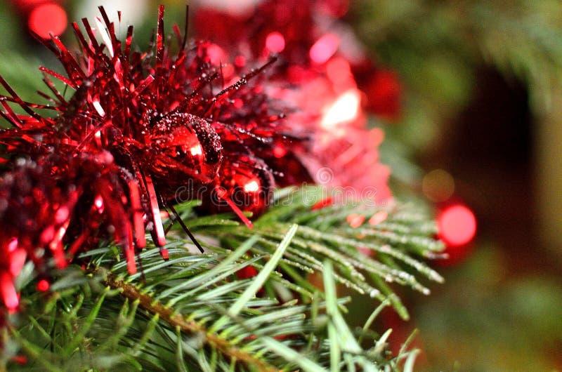 Red Christmas Garland on Christmas Tree stock image