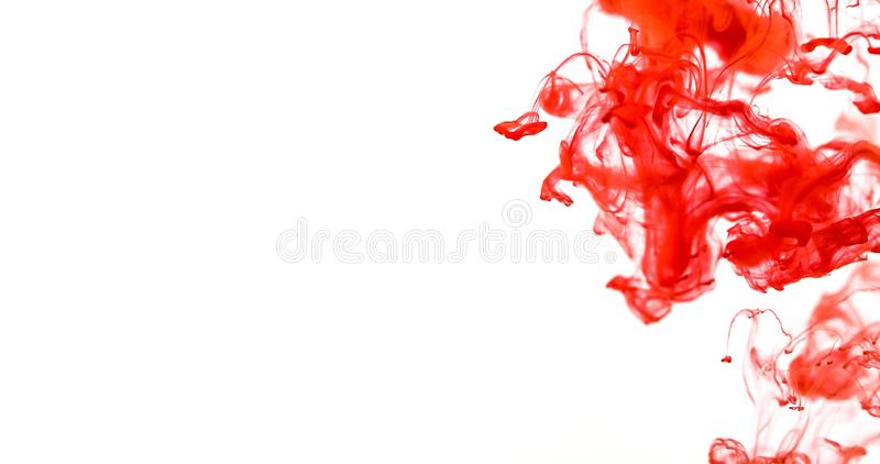 Close up red colored drop in water , abstract motion movement o royalty free stock image