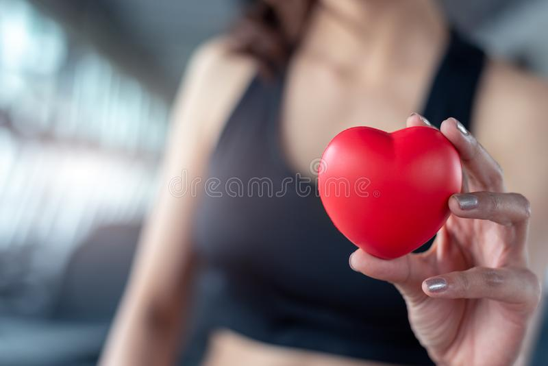 Close up of red massage ball like heart shape in fitness woman hand at sport gym training center. Medical and healthcare of heart royalty free stock image