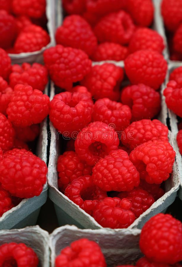 Close up red ripe raspberry on retail display. Close up fresh red ripe raspberry berries in plastic container boxes on retail display of farmers market, high royalty free stock image