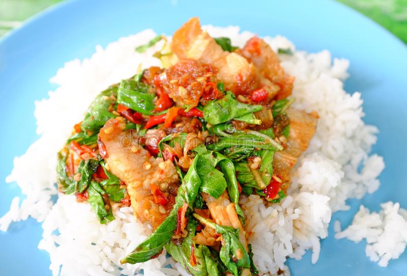 Close-up Rice topped with Crispy sliced pork and basil leaf. Traditional Thai street food royalty free stock image
