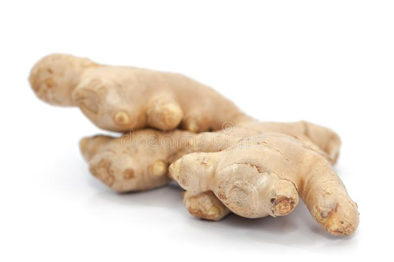 Root ginger isolated on white royalty free stock photo