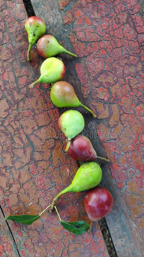 Close-up row of ripe red-green pears lie on an old peeling bench, selective focus royalty free stock images