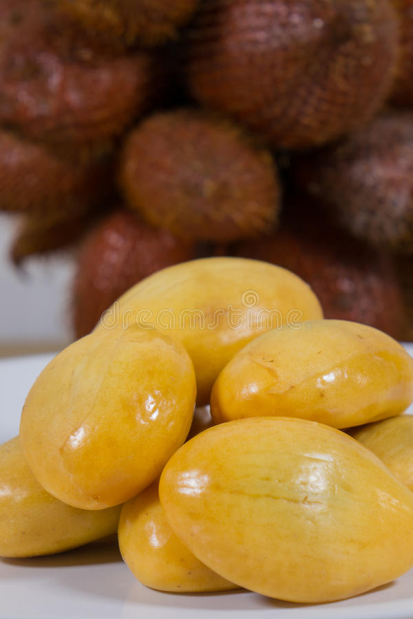 Close up of salak royalty free stock image