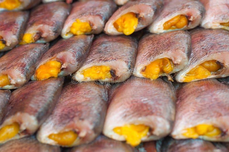 Gourami Fish Food | Close Up Salted Snake Skin Gourami Fish Drying Stock Image Image