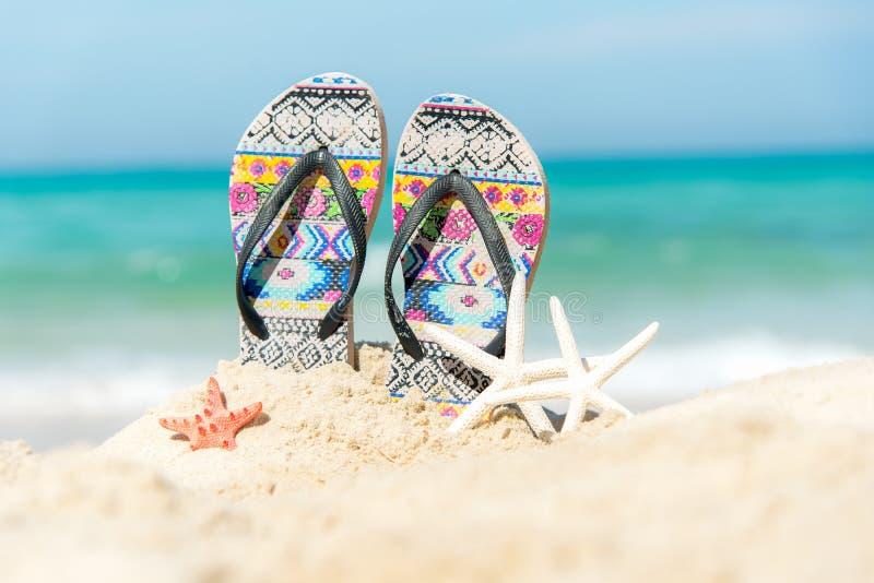 Close up sandals on the sand beach with starfish sandy beach. stock photos