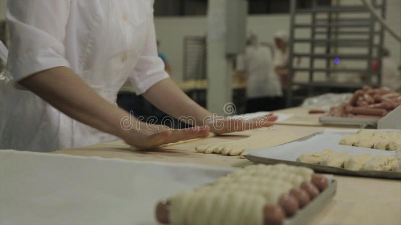 Close up for sausages wrapped in raw puff pastry at the bakery and a baker woman rolling out dough. Raw hot dogs rolled stock photography
