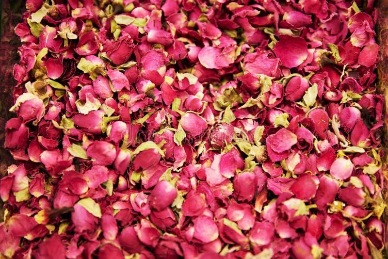 Close up secado de Rose Flowers And Tea Herbs fotos de stock royalty free